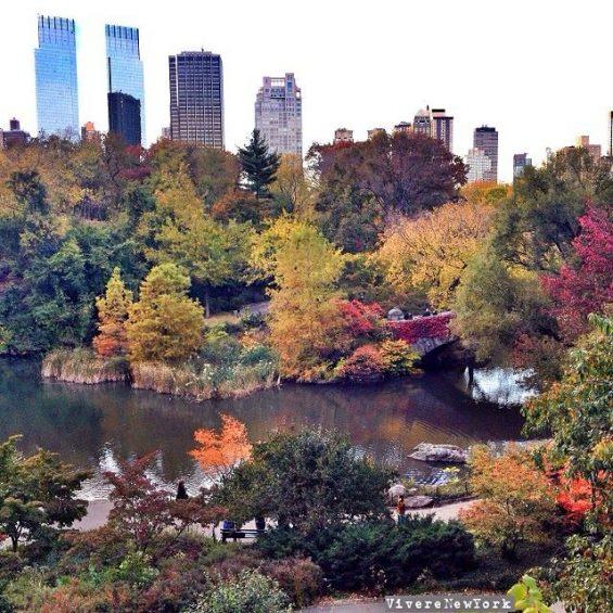 foliage-centralpark