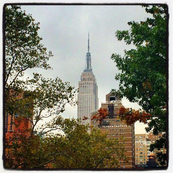 """""""Cielo grigio sù... Foglie gialle giù"""" L'autunno a NYC è iniziato"""