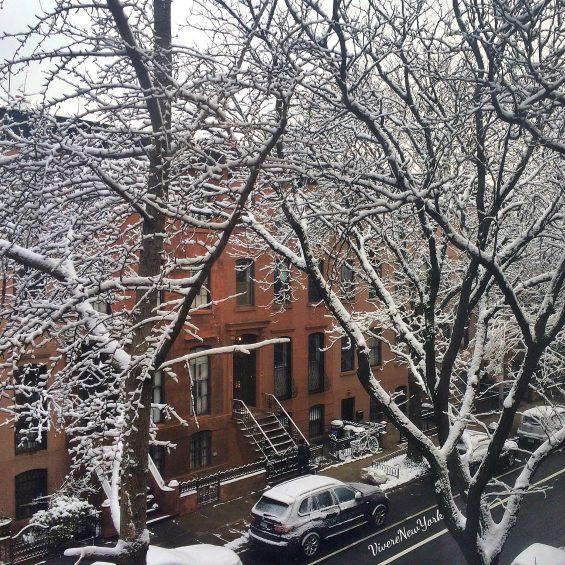 neve-fuori