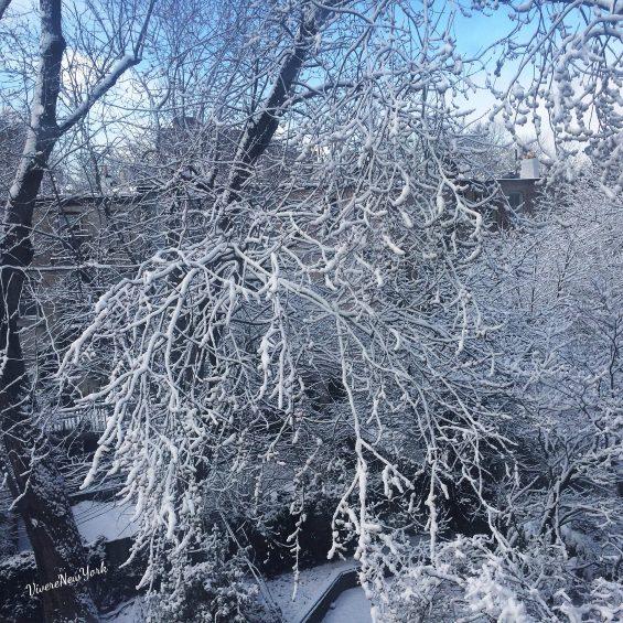 neve-giardino2