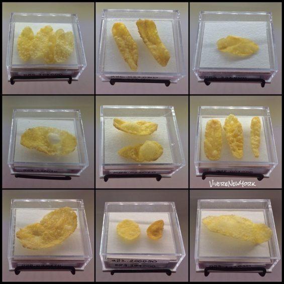 collezione di Corn Flakes